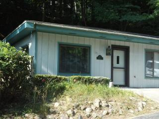 Nice 2 bedroom Saugatuck Cottage with Deck - Saugatuck vacation rentals