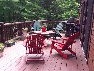 Lake Placid adjacent to Whiteface Resort - Lake Placid vacation rentals