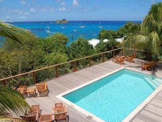 Charming Villa with Internet Access and Television - Saint Barthelemy vacation rentals