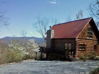 Lizards Look Out Mountain Cabin**HOT TUB**Pets OK - Blue Ridge vacation rentals