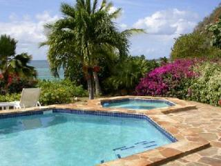 Waterfront Beach Dreams- pool- jacuzzi, tropical gardens & snorkeling - Virgin Gorda vacation rentals