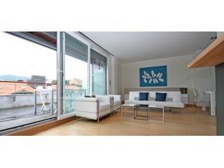 Hondarribi 8.5.A | Great terrace, better price - Hondarribia vacation rentals