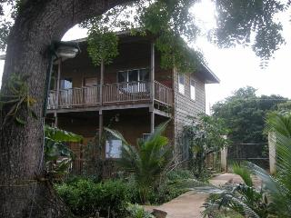Beautiful Condo with Deck and Internet Access - Utila vacation rentals