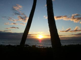 OCEAN VIEW-SPRING AVAILABILITY (March, April, May) - Kihei vacation rentals