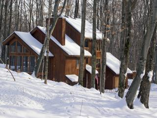 Nice House with Deck and Internet Access - Harbor Springs vacation rentals