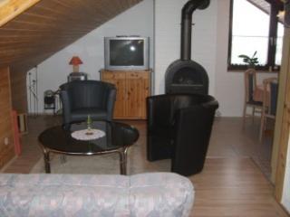 Vacation Apartment in Neckargemünd - 753 sqft, great view, wood stove (# 2888) - Neckargemund vacation rentals