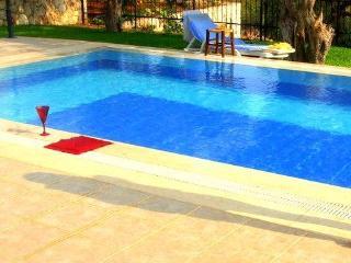Luxury Sea View Villa - Blue Olive  ~ KALKAN - Antalya vacation rentals