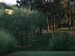 Podere Gattabigia  Casa Vacanze - Malmantile vacation rentals