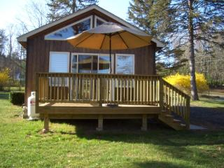 DreamCatcher Cottage, Mtn Views - romantic setting - Woodstock vacation rentals