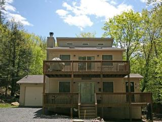 Grizzly Lodge - Lake Harmony vacation rentals