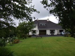 B&B beside Mount Falcon Castle and The River Moy. - Foxford vacation rentals