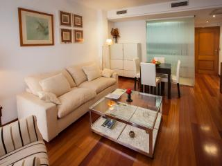 Duplex with private roof terrace - Valencia vacation rentals