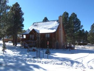 Spacious 4 bedroom Vacation Rental in Angel Fire - Angel Fire vacation rentals