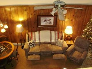 Nice 3 bedroom Apartment in Angel Fire - Angel Fire vacation rentals