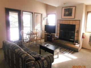 Ski Run A10 - New Mexico vacation rentals