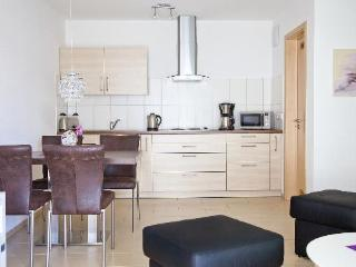 LLAG Luxury Vacation Apartment in Friedrichshafen - 581 sqft, warm, comfortable, relaxing (# 2894) - Überlingen vacation rentals