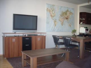 1 bdr luxury flat with gym, squash & wellness - Budapest vacation rentals