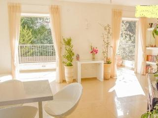 Luxury 3br+spacious terrace at Rehavia - Jerusalem vacation rentals