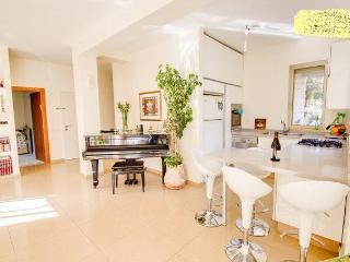 Sunny Condo with Internet Access and Dishwasher - Jerusalem vacation rentals