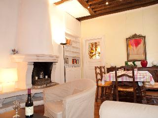 Rue de Turenne. Amazing 2 bedroom in the Marais by the Place des Vosges - 3rd Arrondissement Temple vacation rentals