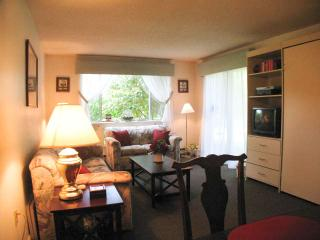 Ocean Edge Lower Level with Murphy Bed & Pool (fees apply) - FL0480 - Brewster vacation rentals