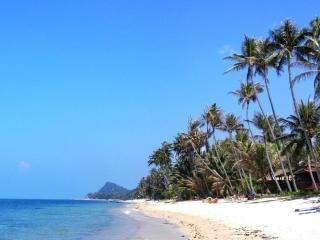 Bang Por Beachfront Resort -  Villa PALM - Mae Nam vacation rentals