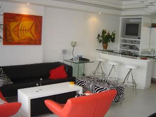 (#147) Very Nice 3bd in Ipanema with a great view - Niteroi vacation rentals