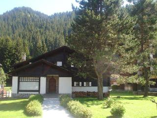 12  bed chalet in Morgins Portes du Soleil - Montreux vacation rentals