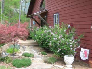Rustic Mountain Getaway with Hot Tub and free Wifi - Waynesville vacation rentals