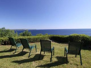 Lion's Head cottage (#721) - Lions Head vacation rentals
