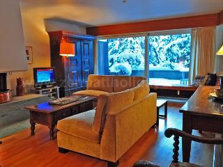 Apartment Emilie - Valais vacation rentals