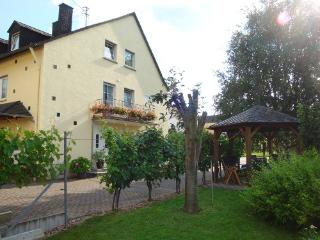 Vacation Apartment in Trittenheim - 915 sqft, wine culture,  warm (# 2910) - Mehring vacation rentals