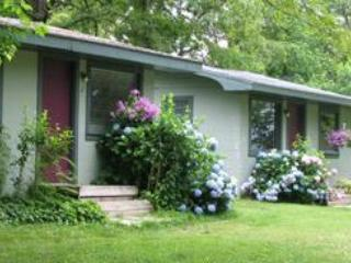 Lakeside Cabins #1-6  - Green Valley Resort - Missouri vacation rentals