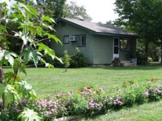 Tree Cottage #7,8  - Green Valley Resort - - Image 1 - Branson West - rentals