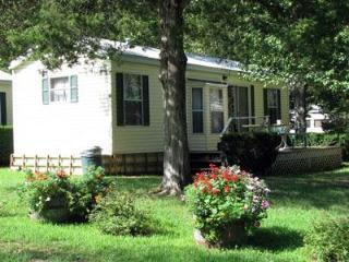Park Cabin 17-19  Green Valley Resort - Branson West vacation rentals