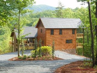 Livintha Dream Lodge- 4 Nal Forest Mountain Views Year Round, 2 m to B R Lake - Blue Ridge vacation rentals