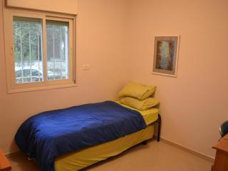 Beautiful 3 Bedroom in Talbieh - Jerusalem vacation rentals