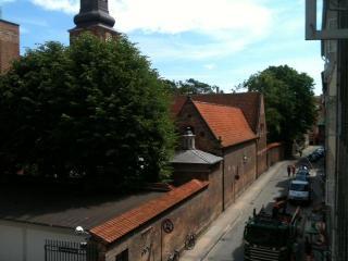 Wonderful Appartment in Historical City Centre - Copenhagen vacation rentals