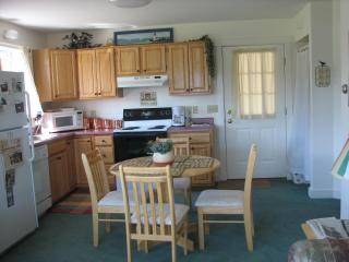 Clean, cute and cozy Jay Peak view - Jay vacation rentals