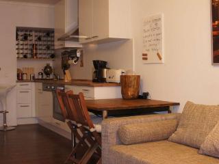 CR100bOFF - Moderne 2-Zimmer-Wohnung mit Skylineblick / 17min bis zur Messe - Offenbach vacation rentals