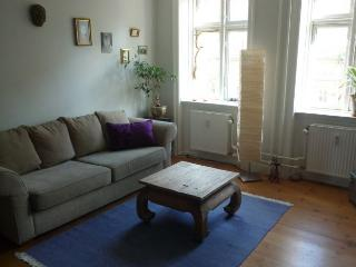 Lovely Copenhagen apartment close to Central Station - Copenhagen vacation rentals