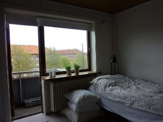 Nice Copenhagen apartment near Sjaeloer station - Copenhagen vacation rentals