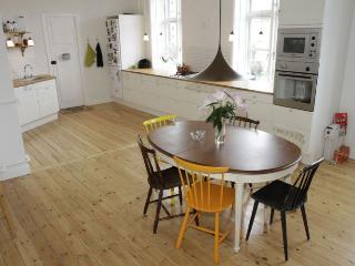 Copenhagen apartment on a side street at Frederiksberg - Copenhagen vacation rentals