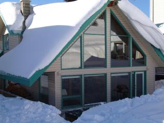 Skimore Chalet   Ski in Ski Out sleeps 16 - Silver Star Mountain vacation rentals