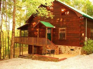 Luxurious Fightingtown Creek Cabin, 2 King Suites - Blue Ridge vacation rentals