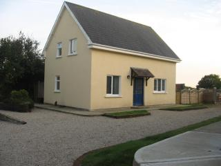 Cozy House in Enniscorthy with Internet Access, sleeps 5 - Enniscorthy vacation rentals