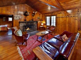 Creek Side Knotty Pine 1930s Lodge on 575 Acres - Dingmans Ferry vacation rentals