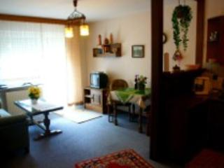 Vacation Apartment in Bad Orb - 452 sqft, modern, warm, friendly (# 2964) - Bad Orb vacation rentals