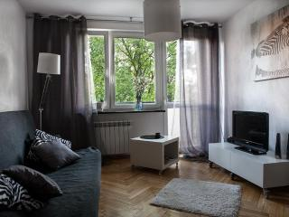 Bruna Apartment - Close to Center Studio - Central Poland vacation rentals
