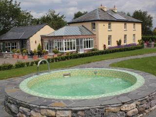 Nice Villa with Internet Access and Satellite Or Cable TV - Caherconlish vacation rentals